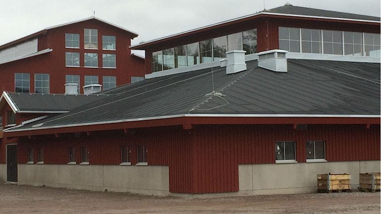 Smedstad ridsportcenter under uppbyggnad. Rödmålat trä och många fönster.