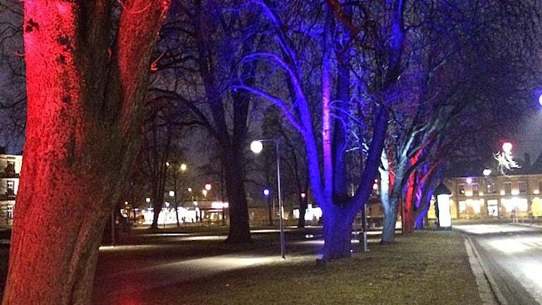 Slutspelsljus i Linköping.