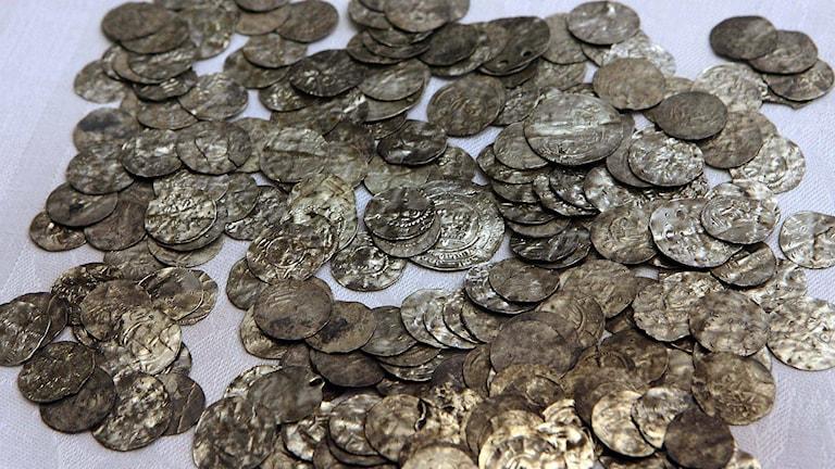 En silverskatt likt denna från Gotland kan kanske inte metallsökarna räkna med. Men de hjälper till att rensa marken från skrot som kan skada djur.