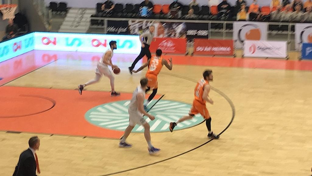 Dolphins mot Nässjö i SM-semifinal 1:7