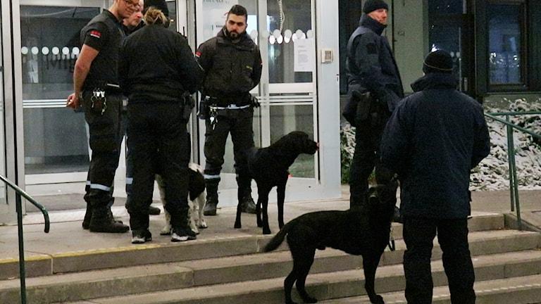 Bombhundar utanför Migrationsverket.