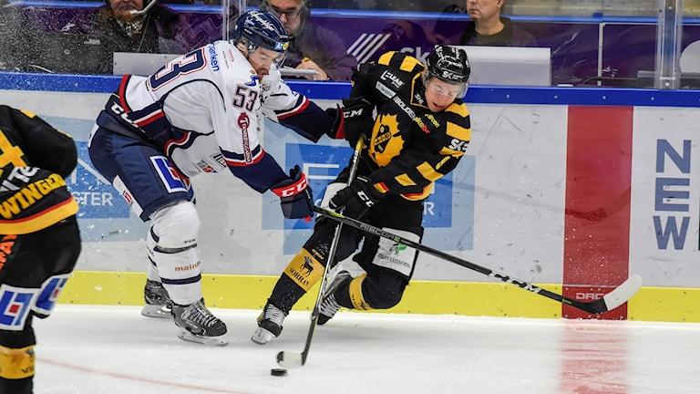 Tim Söderlund Skellefteå vinner en sargduell mot Eddie Larsson Linköping under torsdagens SHL-match i ishockey mellan Skellefteå AIK - Linköpings HC i Skellefteå Kraft Arena.