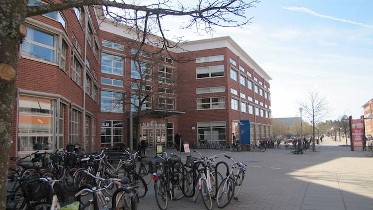 Vy Linköpings universitet. Foto: Rosmari Karlsson/Sveriges Radio