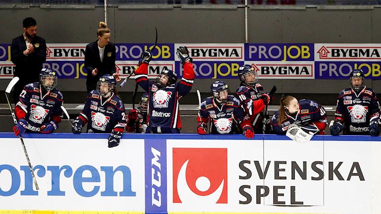 Linköpings avbytarbås. Foto: Stefan Jerrevång/TT.