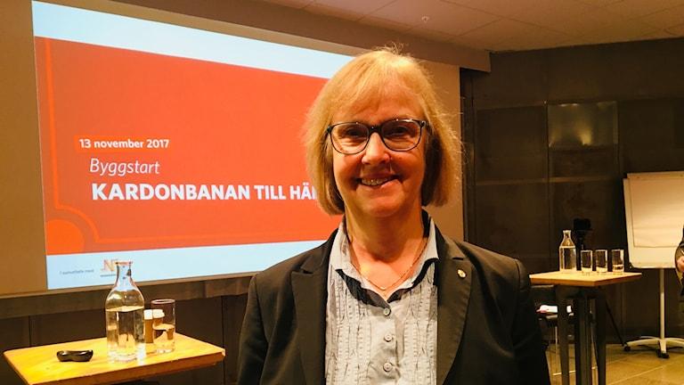 Lena Erixon, Generaldirektör Trafikverket.