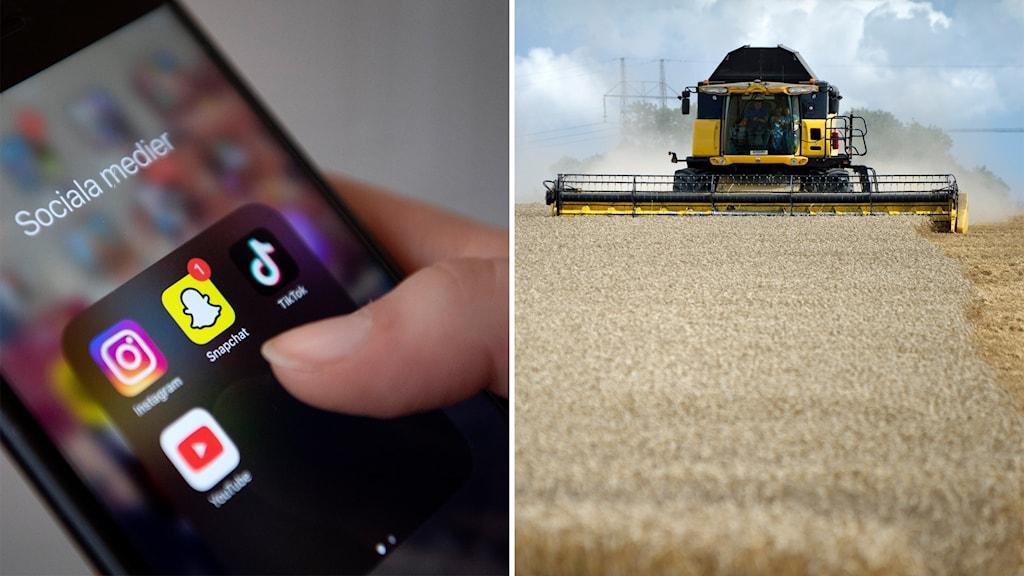 Lantbrukare får lära sig sociala medier för at nå ut till konsumenterna.