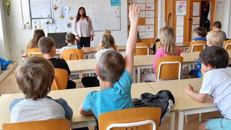 Skola, barn, elever, lärare, undervisning