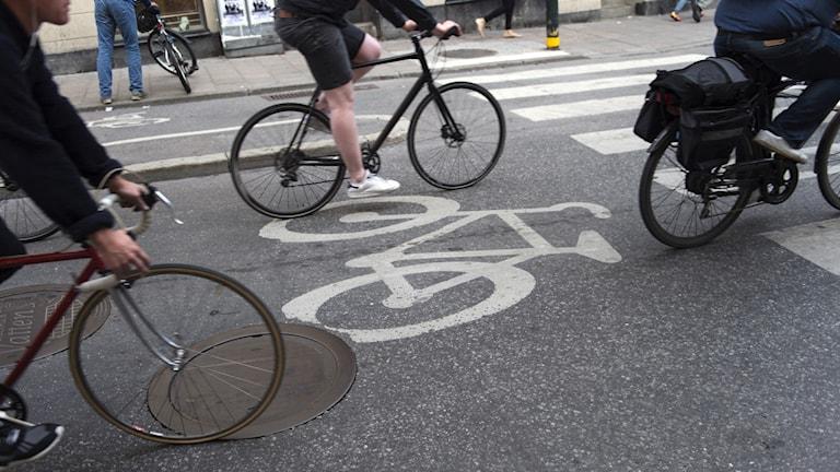 Cyklister på en uppmärkt cykelbana.