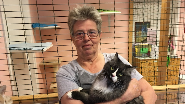 Ordförande Inger Ydrenius tillsammans med katten Gösta.