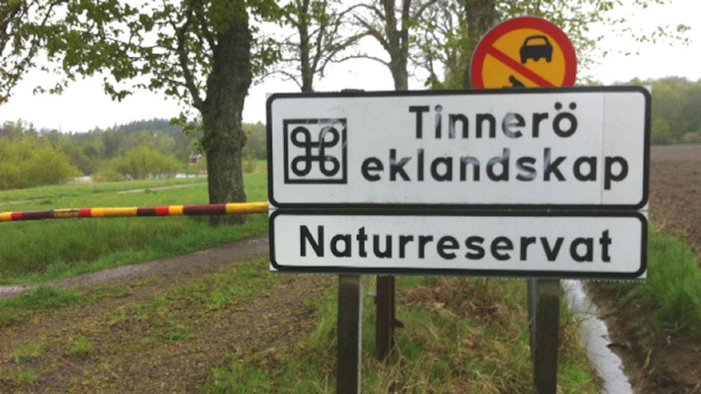 Vägbom i Tinneröd eklandskap i Linköping