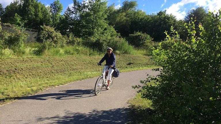 Cyklist kör fram bakom skymmande buske vid cykelbana.