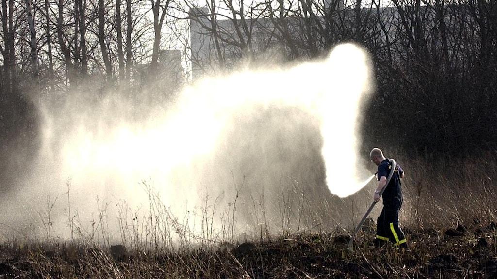 En brandman sprutar vatten på en torr äng för att förhindra gräsbrand.