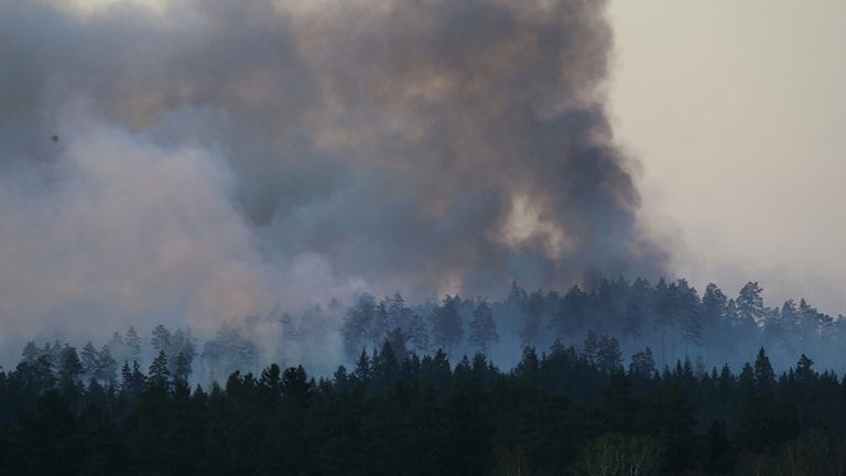 Skogsbrand med mycket rök i Tjällmo.