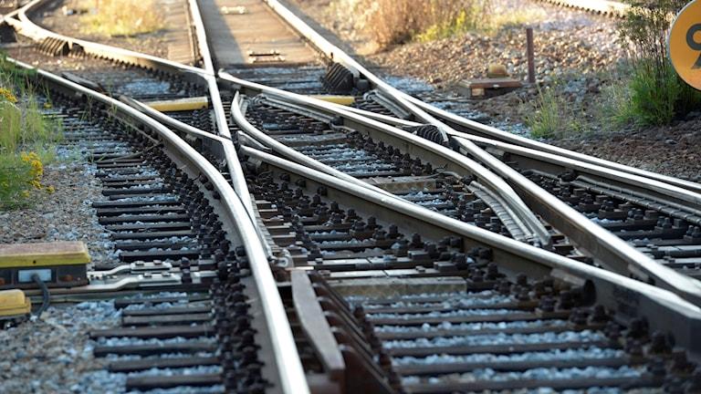 Signalfel i Norsborg skapar stora förseningar.
