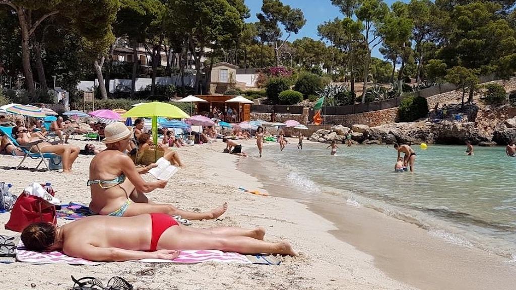 Solande människor på strand
