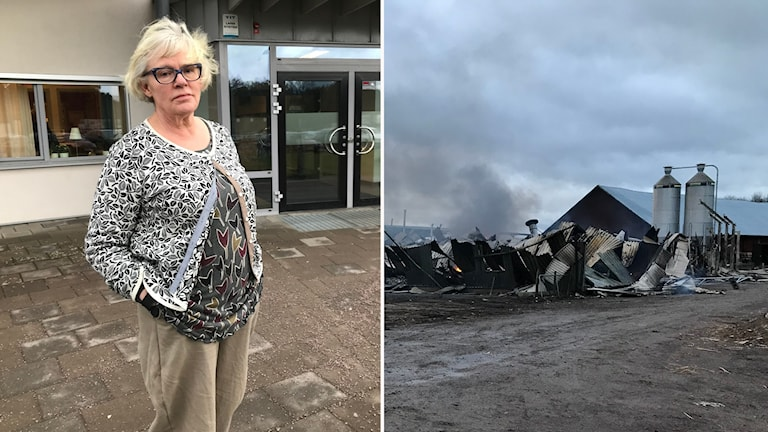 Montage Elisabeth Bringer HAllberg rektor Vretagymnasiet och den nerbrunna ladugården Vretagymnasiet