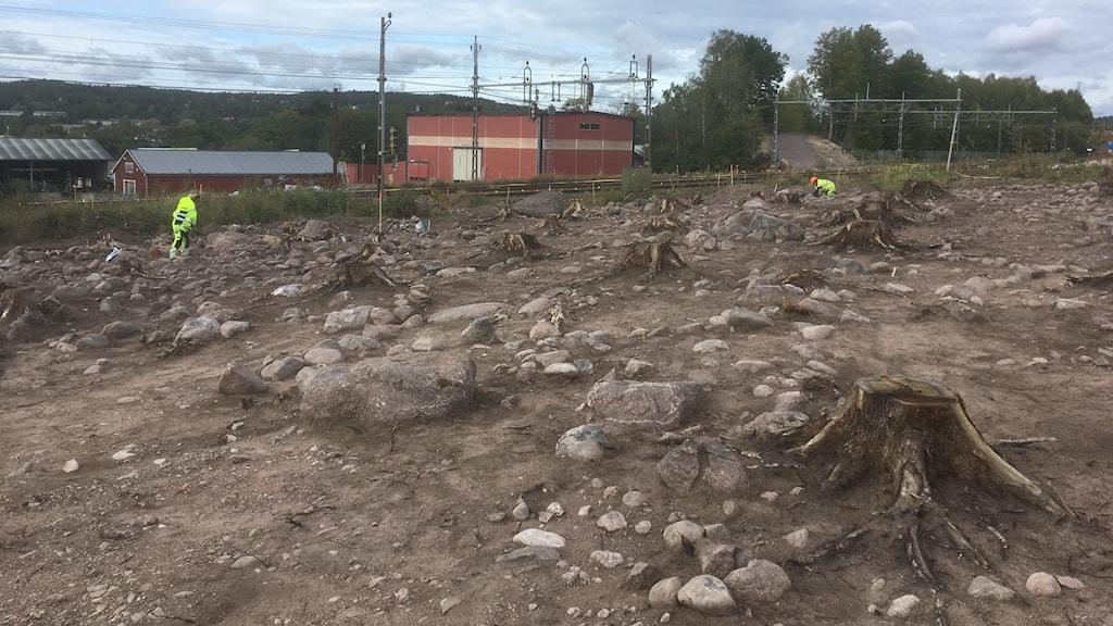 arkeologi,utgrävning,ostlänken,fornlämning