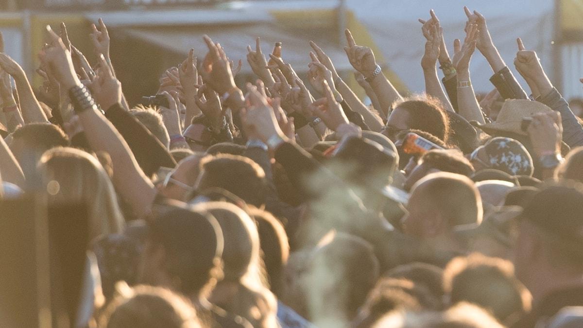 Norrköpingsbandet LG LOST ska spela på Meltdown i London.