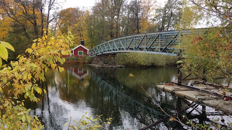 Femöresbron i Norrköping.