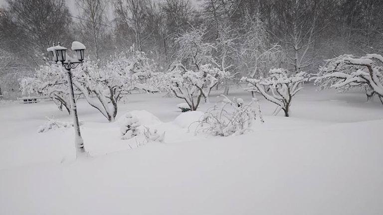 Snöoväder i Kulla