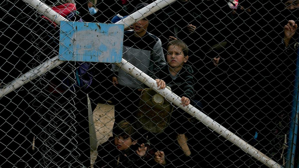 Bild från lägret al-Hol i Syrien