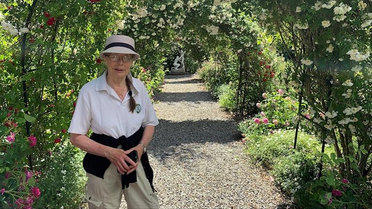 En kvinna står i en gång av rosor i en trädgård.