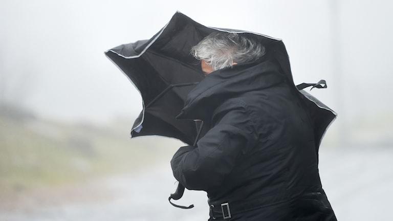 Kvinna med paraply går i blåsen.