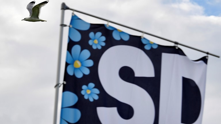 Sverigedemokraternas flagga.