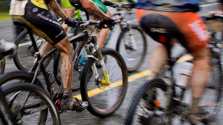 cykel/TT