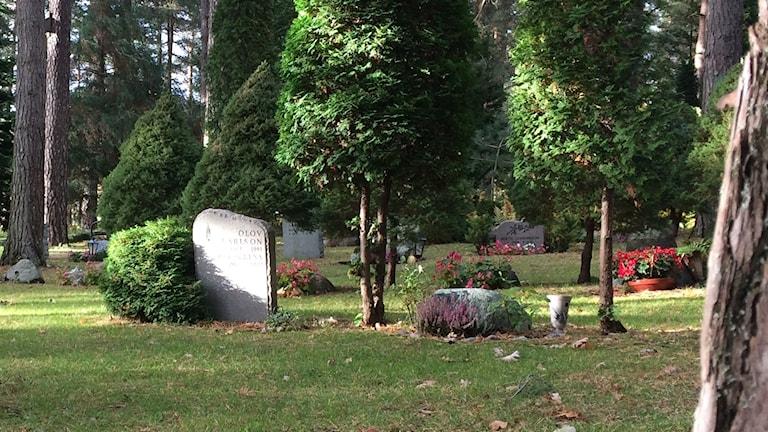 Gravar på Mjölby kyrkogård.