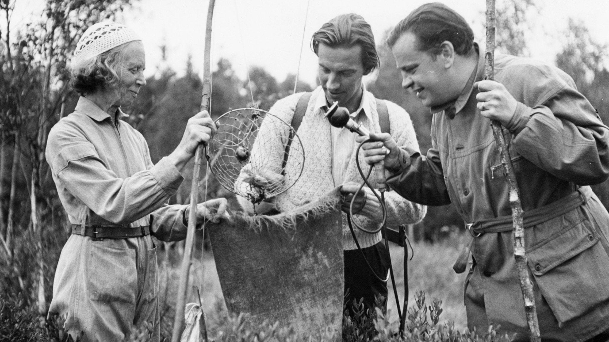 Kräftfiskaren Elsa Lindqvist visar sin fångst för reporter Karl Axel Arvidsson och ljudtekniker Ragnar Ivarsson.