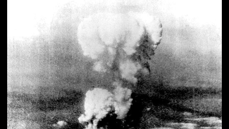 Svampmolnet efter atombomben som fälldes över Hiroshima 1945. Foto: SVT bild