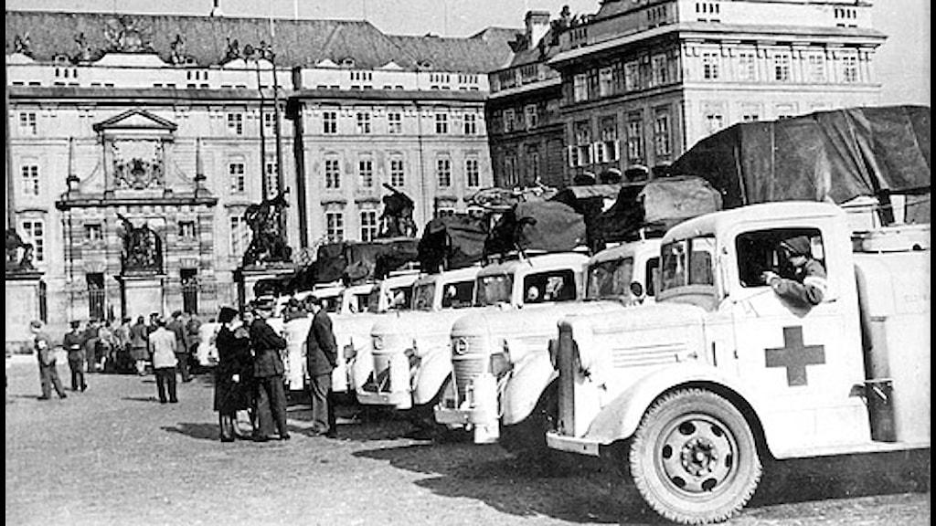 Röda korsets vita bussar uppställda bussar på ett torg i en stad i Tjeckoslovakien 1945.