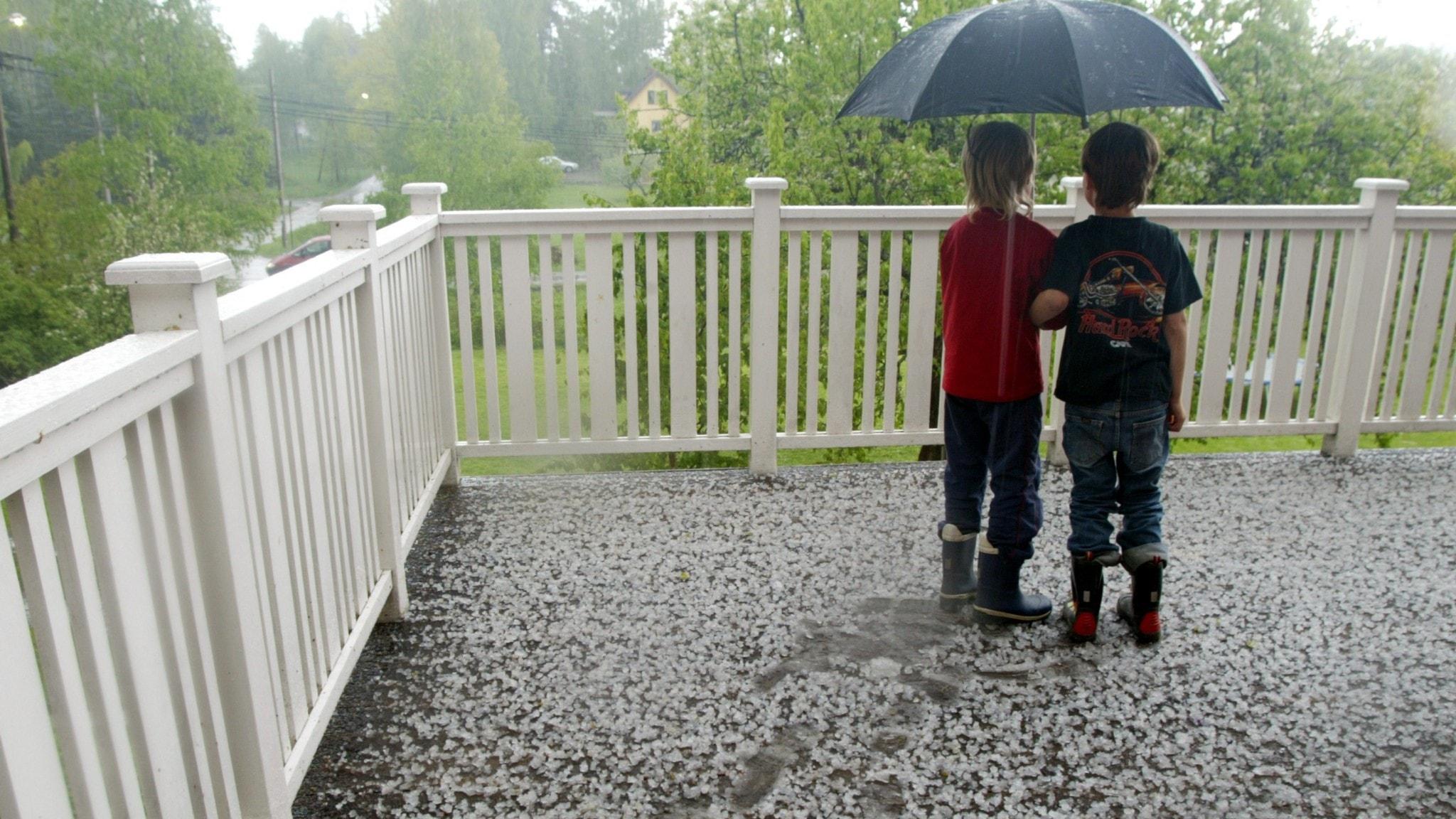 Två pojkar hukar under ett paraply under en hagelskur.