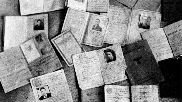 Pass tillhörande människor som mördades i koncentrationslägret Majdanek i Polen./SVT Bild