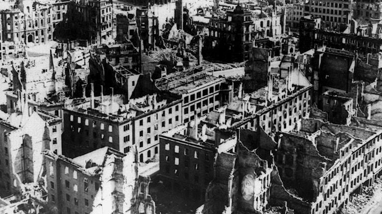 Dresden efter de allierades bombningar i februari 1945./TTA