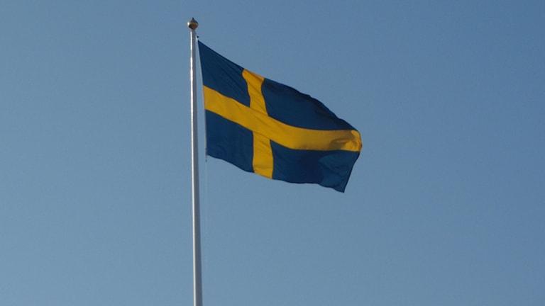Svenska flaggan./SVT Bild