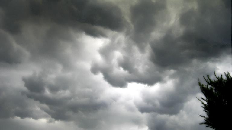 oväder, svart himmel cc