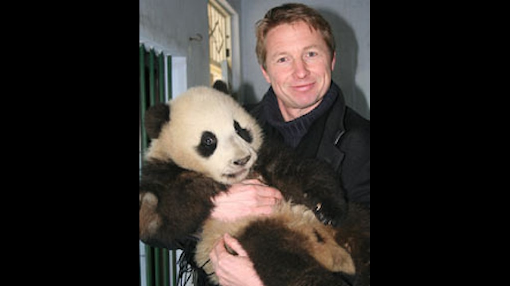 Anders Wennersten med panda 2006. Privat foto.