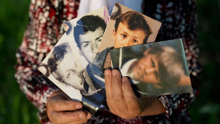 En kvinna håller upp foton av sin man och sina tre söner som dödades i massakern i Srebrenica i juli 1995. Foto: Amel Emric/TT/4/7 2015