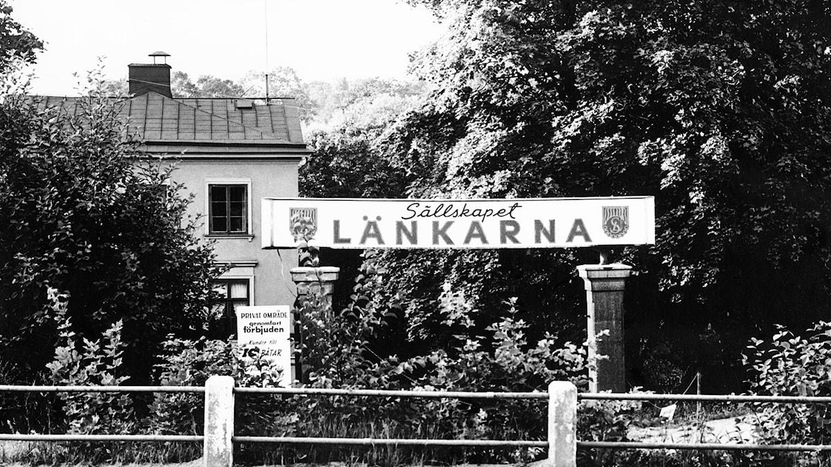 Länkarna. SVT Bild