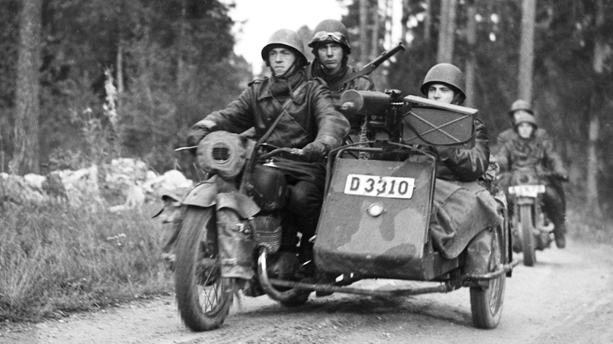 Militärövning. SVT Bild.