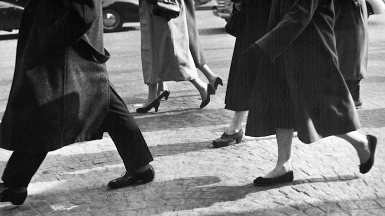 Antastad om och om igen 1953