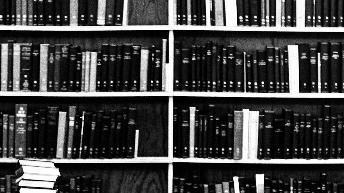 Bibliotek. SVT Bild.