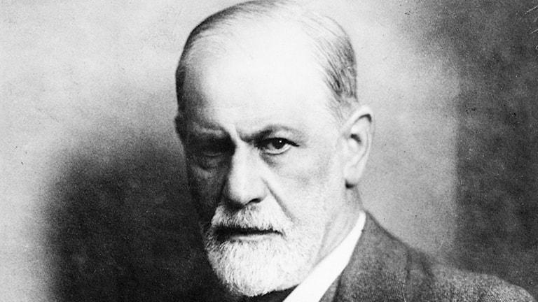 När Freuds hund sprang bort