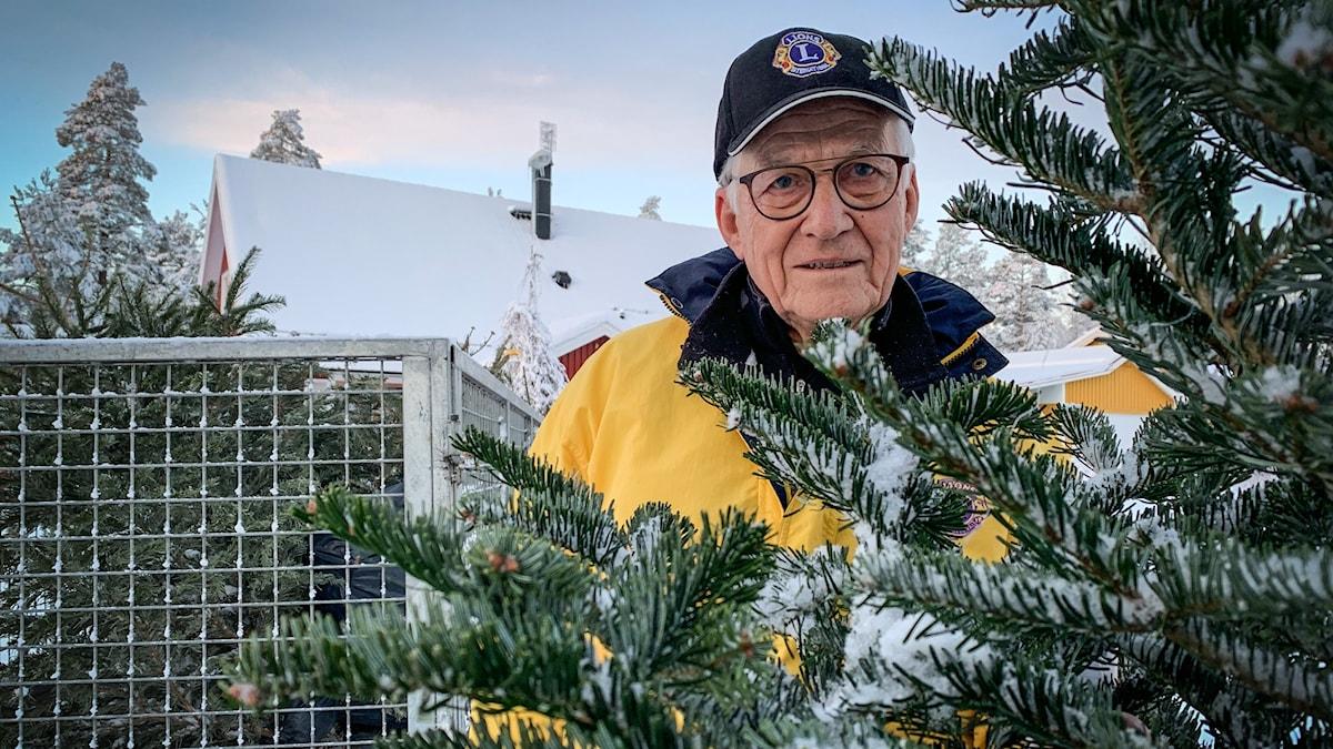 En äldre man i gul jacka, glasögon och keps står bakom en gran.