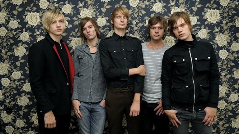 Bandmedlemmarna i Sugarplum Fairy.