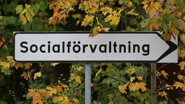Socialförvaltningen. Foto Fredrik Sandberg, Scanpix.