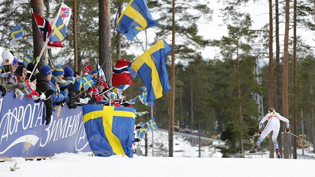 Publik med flaggor hejar på under skid-VM på Lugnet i Falun 2015.