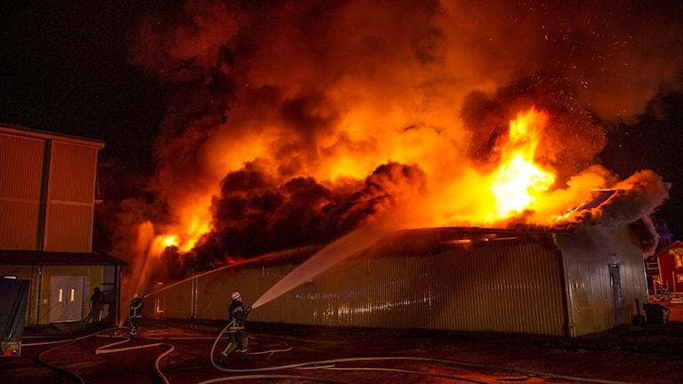 Brandman bekämpar övertänt hus.